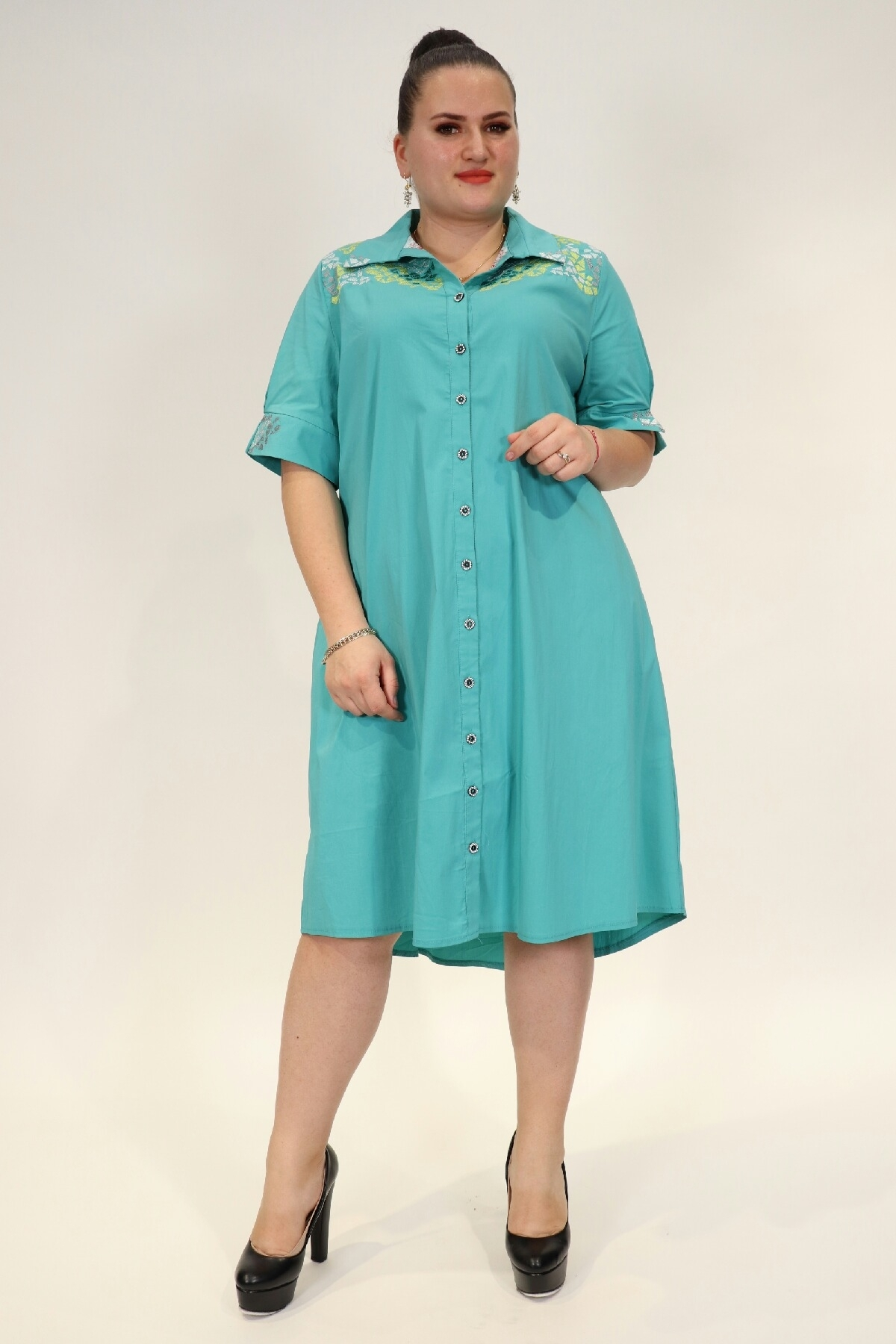 Embroidered flared buttoned dress